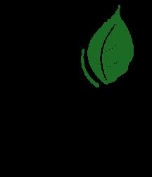 Balis_Logo_positiv